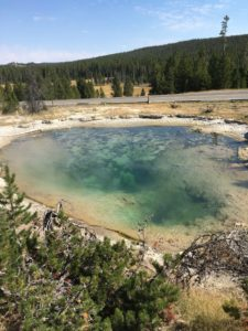 thermal-pool-ynp